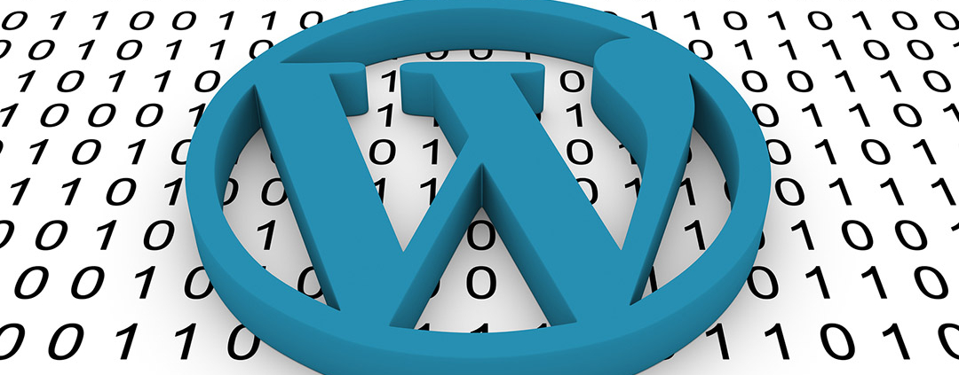 4 Crucial Things You Need To Know When Using WordPress